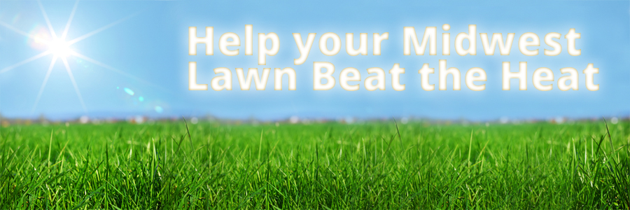 Midwest Summer Lawncare Tips