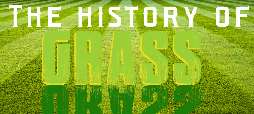 The History of Grass in the United States