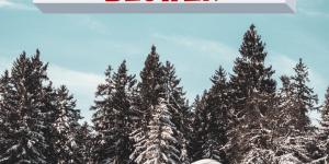 Toro SnowMaster: A Hybrid Self Propelled Snowblower